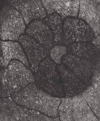 stone_flower1